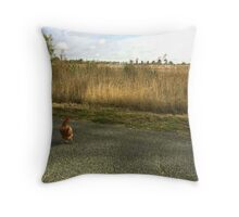 chooks on a country road Throw Pillow