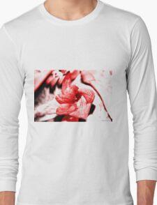 Honey Twirl Long Sleeve T-Shirt