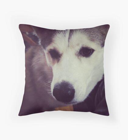Doggie days Throw Pillow