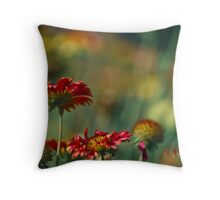Yangon Park and the filed. Got 3 Featured Work:) Throw Pillow