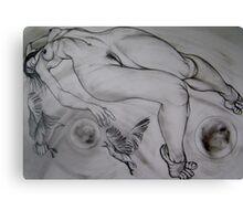 SLEEPING WITH SEAGULLS Canvas Print