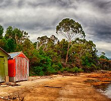 Boat Sheds by Paul Amyes