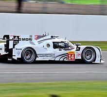 Porsche Team No 14 by Willie Jackson