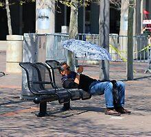 Sunday Snooze - Cincinnati 2014 by Tony Wilder
