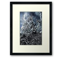 Tahoe...the Dream Framed Print