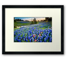 Down by the Pond Framed Print