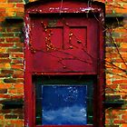 Wormhole Window by RC deWinter