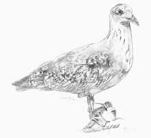 Seagull Ink Drawing Baby Tee