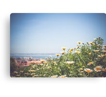 Lisbon Flowers Canvas Print