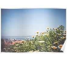 Lisbon Flowers Poster