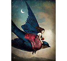 Fairytale Night Photographic Print