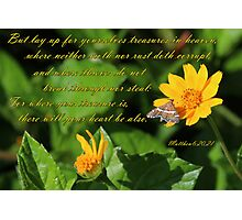 Treasure - Matthew 6:20,21 Photographic Print