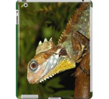 Boyd's Forest Dragon iPad Case/Skin