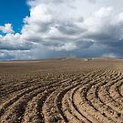 Storm Track by DawsonImages
