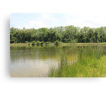 Lakeside Cane Canvas Print