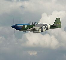 P51 Mustang Gallery - No1 by warbirds