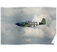 P51 Mustang Gallery - No1 Poster