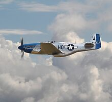 P51 Mustang Gallery - No3 by Pat Speirs