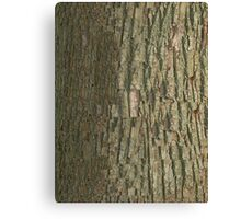 Black Oak Bark  Canvas Print