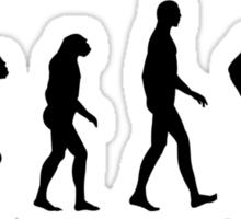 BBQ Evolution Sticker