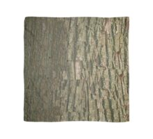 Black Oak Bark  Scarf