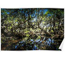 Mystical Goblin Swamp Poster