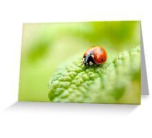 ladybug red green Greeting Card