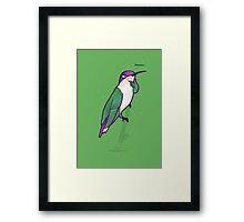 Hmmming Bird Framed Print