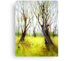 Carpets of Gold Canvas Print