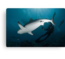 Lady with a Shark Canvas Print