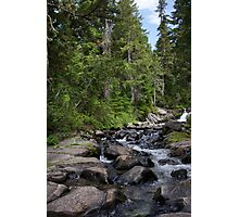 Flowing Creek Photographic Print