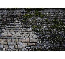 Mossy Brick Wall Photographic Print