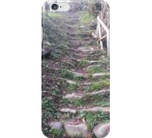 Old passages 2 iPhone Case/Skin