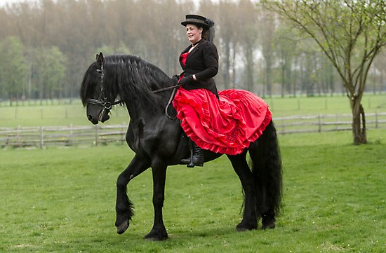 Friesian Horse and Rider by Patricia Jacobs CPAGB LRPS BPE4