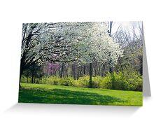 Spring Scene Greeting Card