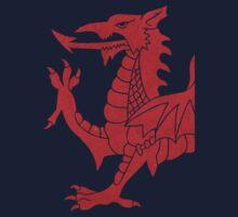 Cymru Dragon Shirts Kids Clothes