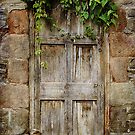 Old  Door by Christine Lake