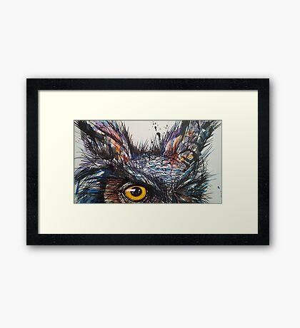 'Owl Insanity' 2014 Framed Print