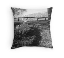 Dog on the Grass Throw Pillow