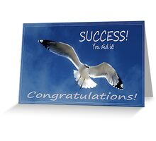 Congratulations Card with a Soaring Seagull Greeting Card