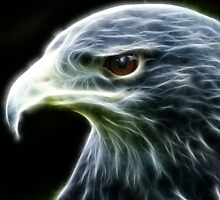 Eagle by fractacular