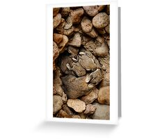 Nest of Bunnies #1 Greeting Card