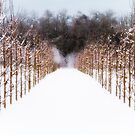 Ruths Winter Scene by Russ Styles