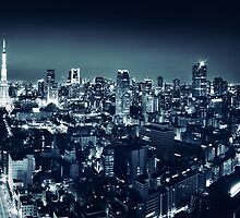 Panoramic city scenery of Tokyo and Tokyo tower Black and white art photo print by ArtNudePhotos