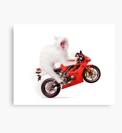 White cat riding motorcycle art photo print Canvas Print