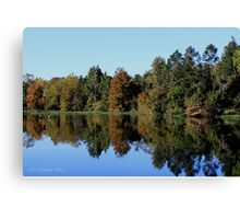 Autumn Reflections - Alabama River Canvas Print