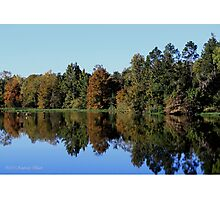 Autumn Reflections - Alabama River Photographic Print