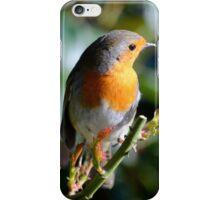Cute Lil Robin- Spring! iPhone Case/Skin