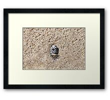 Outdoor pharaoh-palace-security Framed Print
