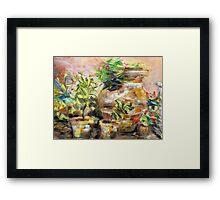 Garden Pots Framed Print